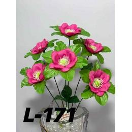 Квіти L-171